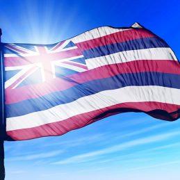 Hawai'i logo
