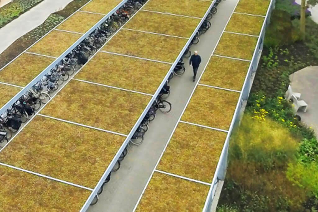 A massive green roofed cycle shelter installation